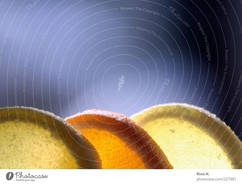 GeleeZitronenScheiben gelb Ernährung Lebensmittel orange süß lecker Süßwaren Scheibe sauer Weingummi Zuckerrand