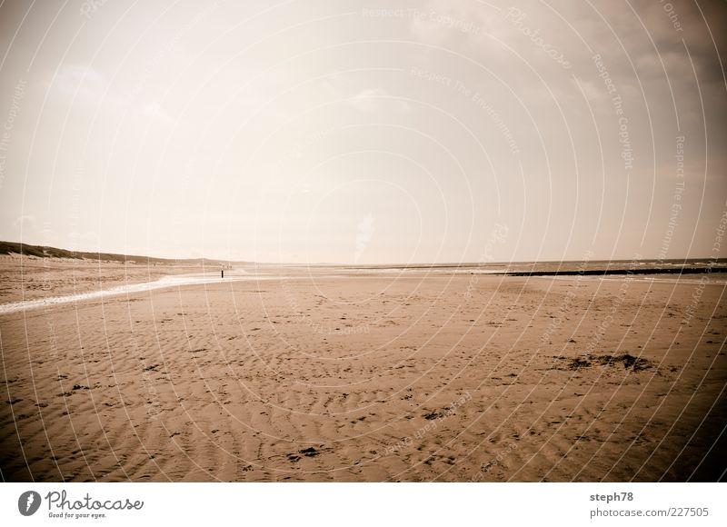 Quiet Time Himmel Natur Wasser Ferien & Urlaub & Reisen Strand Meer ruhig Ferne Erholung Freiheit Umwelt Landschaft Sand Stimmung Zufriedenheit Horizont