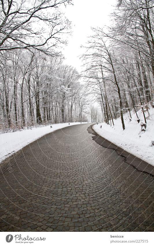 empty Winter Einsamkeit Wald Straße kalt Schnee Wege & Pfade Eis Hintergrundbild Verkehr leer trist gefroren ausdruckslos Kopfsteinpflaster Kurve