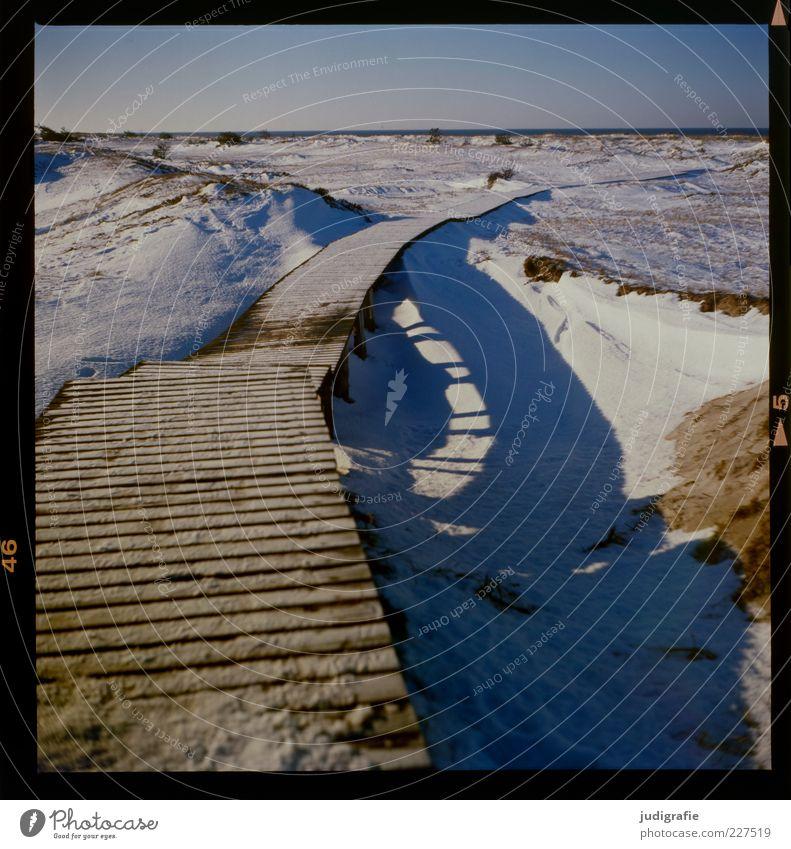 Darßer Ort Umwelt Natur Landschaft Himmel Winter Klima Eis Frost Schnee Küste Ostsee kalt natürlich Stimmung Wege & Pfade Steg Holz Holzweg Farbfoto