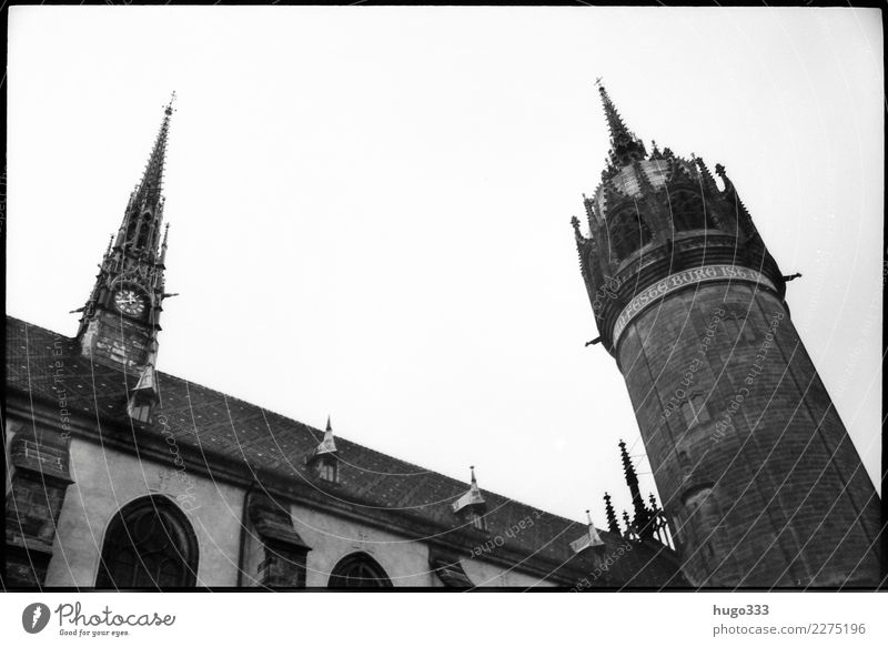 Martin Luther Lutherstadt Wittenberg Sachsen-Anhalt Europa Stadt Altstadt Kirche Dom Bauwerk Gebäude Fassade Sehenswürdigkeit Wahrzeichen Kirchturm Kraft