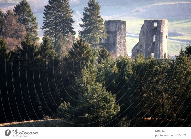 Bella Costa Natur alt Baum Sonne Wald Berge u. Gebirge Landschaft Architektur Fassade kaputt Bauwerk entdecken historisch Wahrzeichen verstecken Ruine