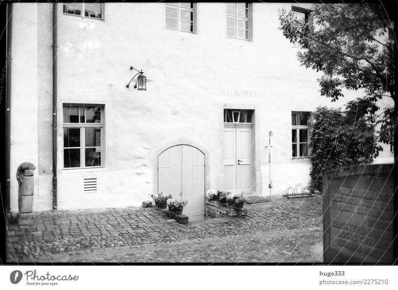 Old Wittenberg Häusliches Leben Haus Lutherstadt Wittenberg Sachsen-Anhalt Dorf Stadt Stadtzentrum Altstadt Sehenswürdigkeit schwarz weiß souterrain