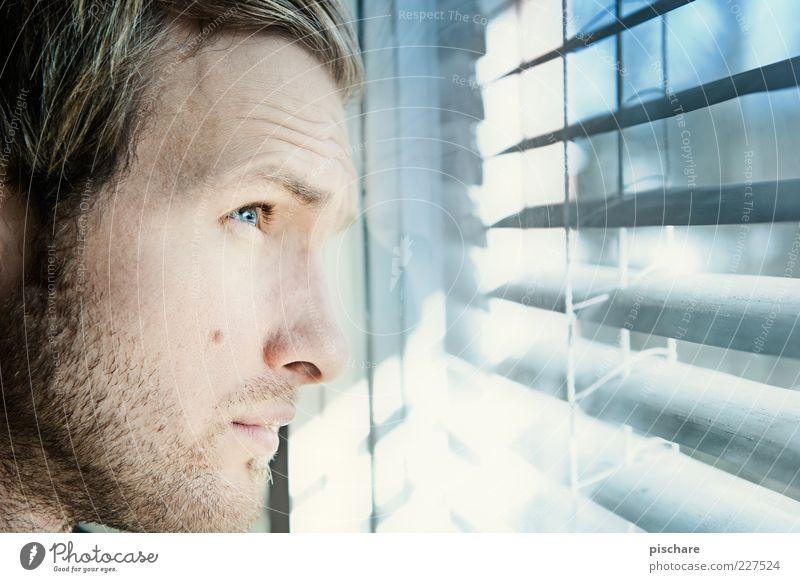 blick in die zukunft... Jugendliche blau Gesicht Einsamkeit Fenster warten Erwachsene maskulin Hoffnung Zukunft beobachten Sehnsucht Erwartung Sorge Anschnitt Jalousie