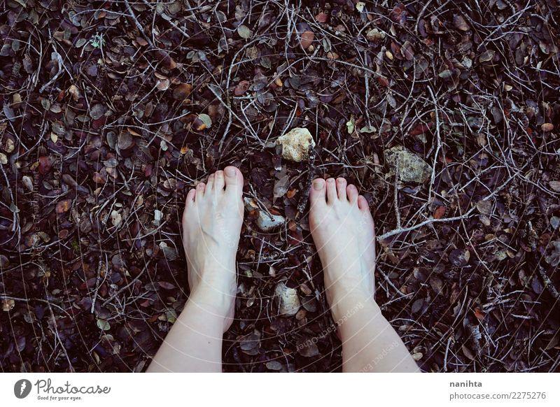 Füße auf Waldboden gehen Design Haut Barfuß Wellness harmonisch Sinnesorgane Erholung ruhig Freiheit Mensch Jugendliche Fuß 1 Umwelt Natur Herbst Winter Blatt