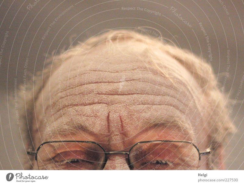 Stirn, Haare und Augen mit Brille eines männlichen Seniors sind mit Staub bedeckt Mensch maskulin Mann Erwachsene Männlicher Senior Leben Haut Kopf