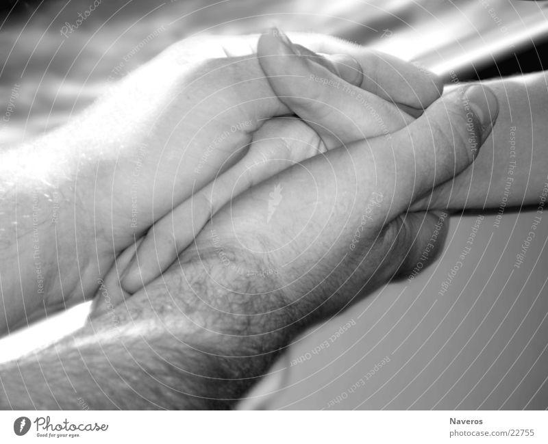 Liebende Glück harmonisch Mensch maskulin Paar Partner Hand 2 berühren festhalten Zusammensein weich schwarz weiß Geborgenheit Sympathie Verliebtheit Treue