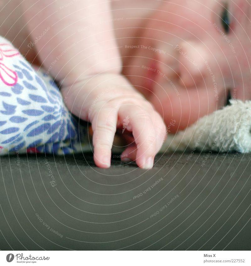 Loisl Mensch Baby Kindheit Hand 1 0-12 Monate lernen klein Geborgenheit Warmherzigkeit Beginn entdecken berühren Bett Babybett Finger greifen neugeboren Stoff