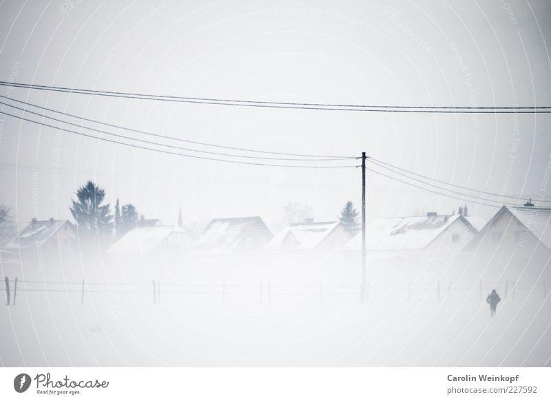 Schneegestöber. Ferne Freiheit Winter Mensch androgyn 1 Landschaft Himmel Wetter schlechtes Wetter Nebel Eis Frost Feld Dorf Haus Einfamilienhaus Gebäude gehen