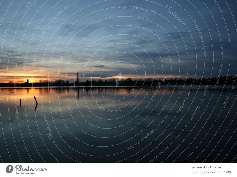 Just A Souvenir Wasser Baum Wolken ruhig Ferne See Schönes Wetter Wasseroberfläche Sonnenaufgang Sonnenuntergang