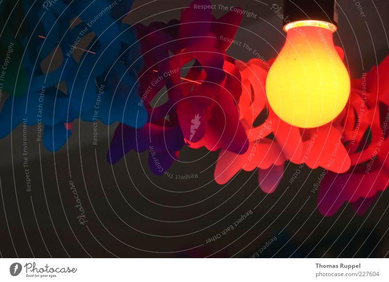 Partyerleuchtung blau rot Freude gelb Lampe hell Beleuchtung Feste & Feiern Raum Fröhlichkeit leuchten Dekoration & Verzierung Veranstaltung hängen Glühbirne