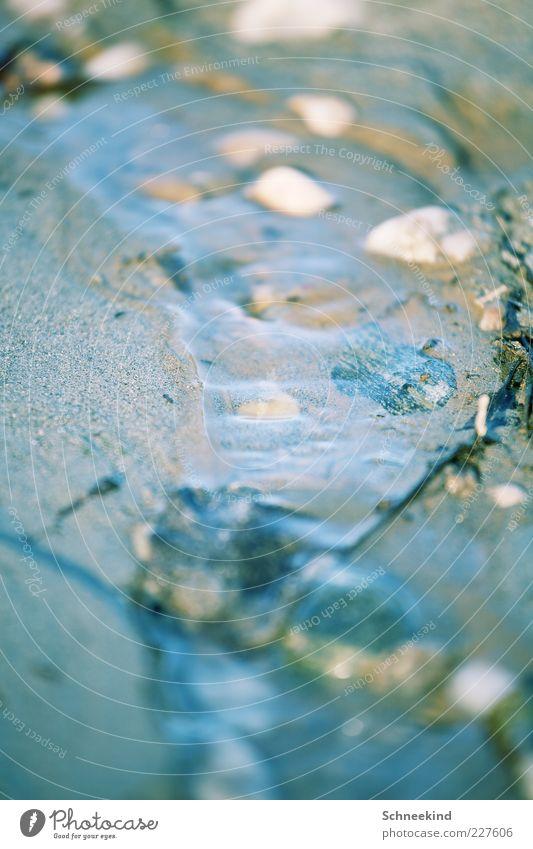 Kindheitserinnerung Umwelt Natur Urelemente Sand Wasser Seeufer Flussufer Meer Bach Stein fließen Rinnsal Naturgewalt klein nass Farbfoto Außenaufnahme