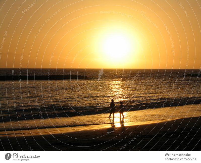 Sonnenuntergang Natur Sonne Meer Strand Ferien & Urlaub & Reisen Liebe Paar orange paarweise Romantik Teneriffa