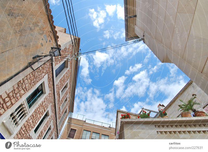 Einsturzgefahr ? Himmel Sommer Schönes Wetter Pflanze Topfpflanze Haus Mauer Wand Fassade Terrasse Fenster Blühend alt ästhetisch Hinterhof Naturstein