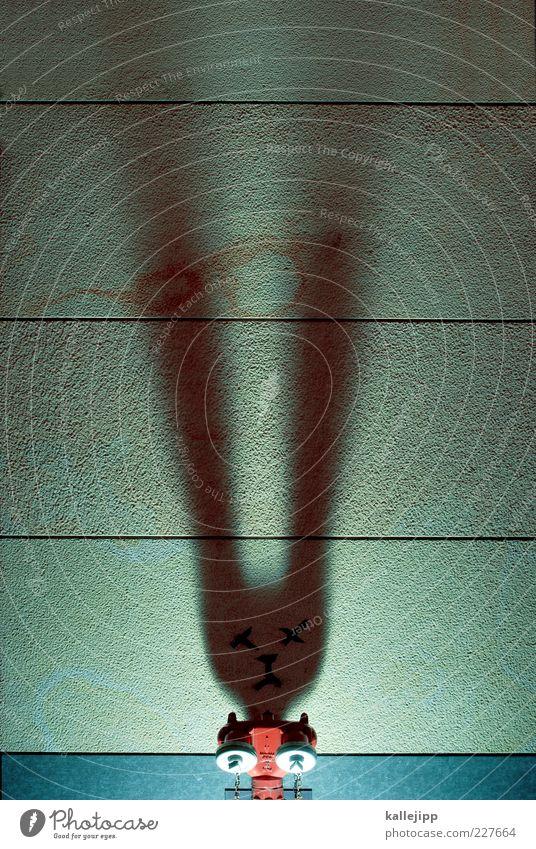 2011 - jahr des hasen Tier Graffiti Kunst Beleuchtung Lifestyle Ohr außergewöhnlich Tiergesicht Ostern trashig Hase & Kaninchen Scheinwerfer Lichtspiel