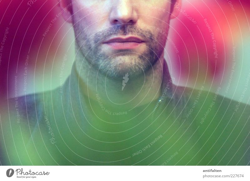 100 Mensch Mann grün rot Blume Blatt Erwachsene Gesicht Erholung Kopf Haare & Frisuren Blüte Mund rosa warten Nase