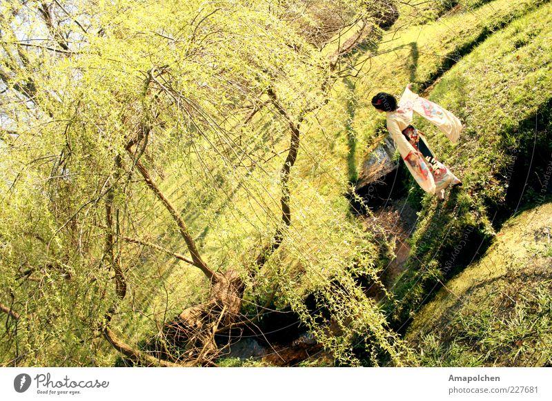 ::11-2:: Frau Natur Baum Landschaft Freude Umwelt Wiese Frühling Glück Garten Park Zufriedenheit Tanzen Fröhlichkeit Schönes Wetter Lebensfreude