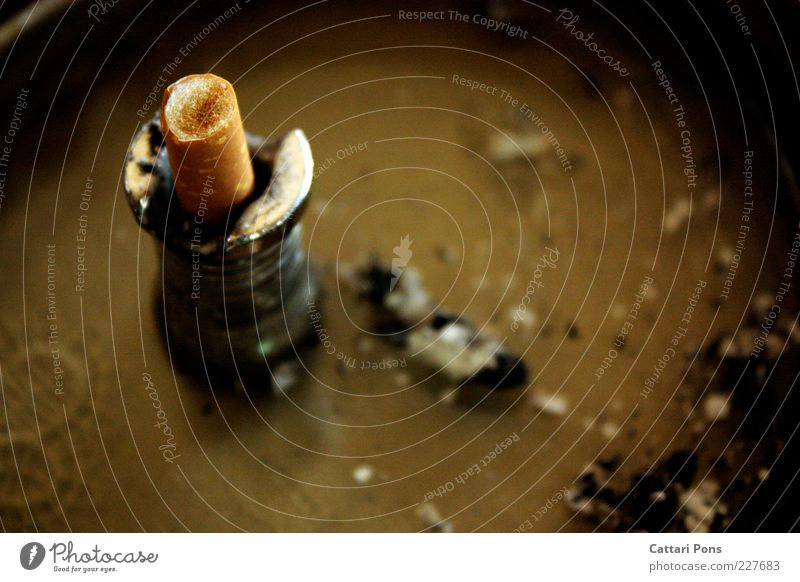die Letzte Zigarette Zigarettenstummel Zigarettenasche Aschenbecher gelb Tabakwaren aus Farbfoto Innenaufnahme Vogelperspektive Makroaufnahme
