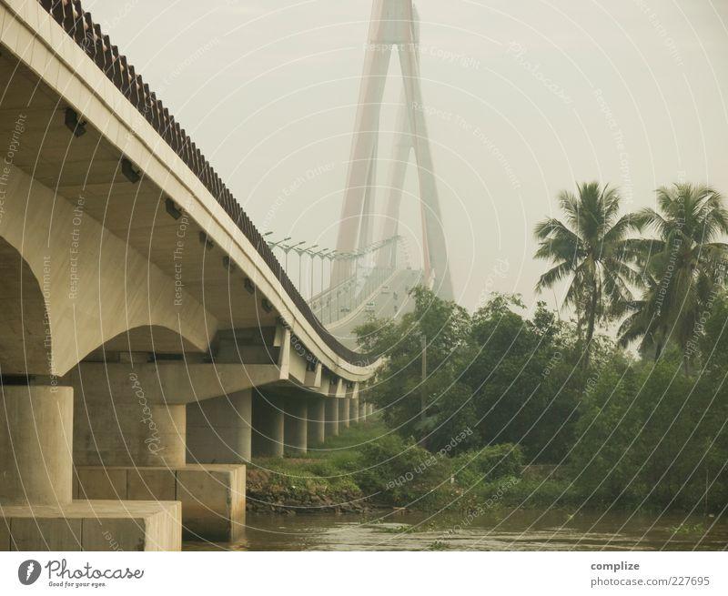 Can-Tho Bridge Natur Himmel Klima Wald Urwald Fluss Brücke Sehenswürdigkeit Verkehr Verkehrswege Personenverkehr Straße Hochstraße Vietnam Mekong Palme Beton