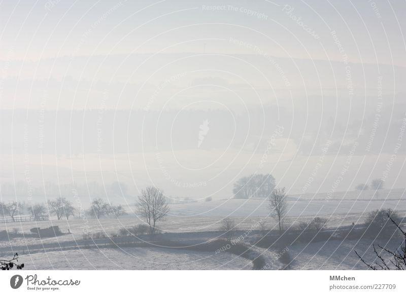 unbunt blau weiß Baum Winter ruhig Ferne Straße kalt Wiese Berge u. Gebirge Landschaft Wege & Pfade Feld Sträucher Hügel Idylle