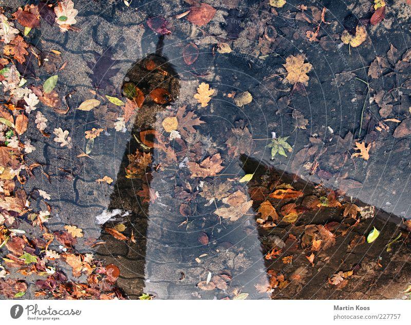 b. im herbst Regen Wetter dreckig nass Wahrzeichen Herbstlaub Pfütze Hauptstadt Textfreiraum Berliner Fernsehturm Spiegelbild Berlin Reflexion & Spiegelung Wasserspiegelung