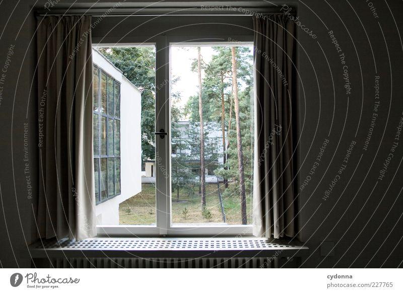 Meisterlicher Ausblick Lifestyle Stil Design Wohlgefühl Zufriedenheit Erholung ruhig Häusliches Leben Raum Umwelt Natur Haus Architektur Mauer Wand Fenster