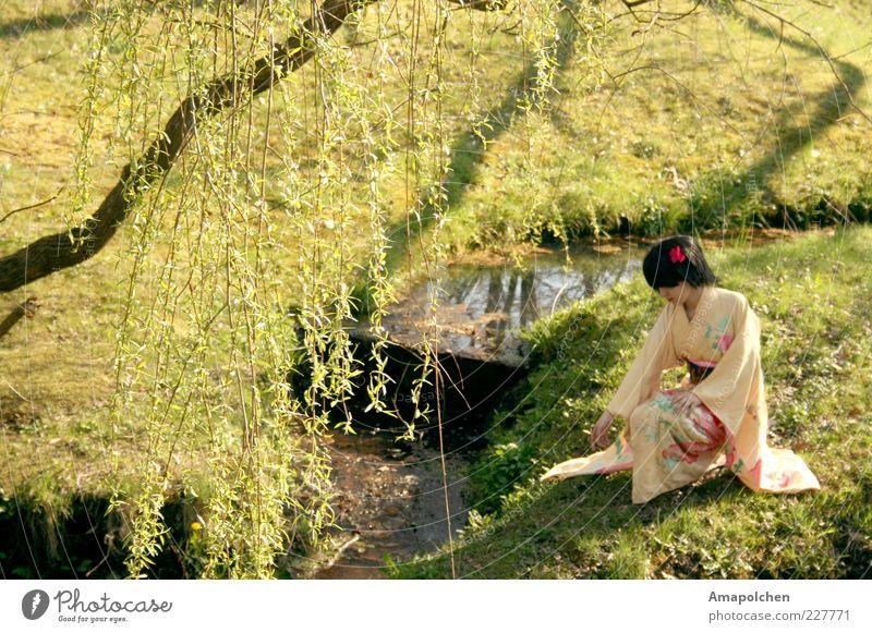::11-3:: Frau Natur Wasser Erholung ruhig Glück Garten Kunst Park Tanzen Kultur Kleid Asien Gemälde Gastronomie malerisch