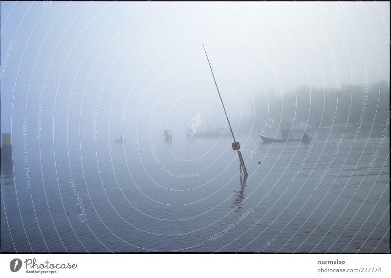Havelfischer in the Morning Natur Wasser Pflanze Umwelt Landschaft Stimmung Kunst Wasserfahrzeug Arbeit & Erwerbstätigkeit Freizeit & Hobby Nebel natürlich Klima Lifestyle trist Fluss
