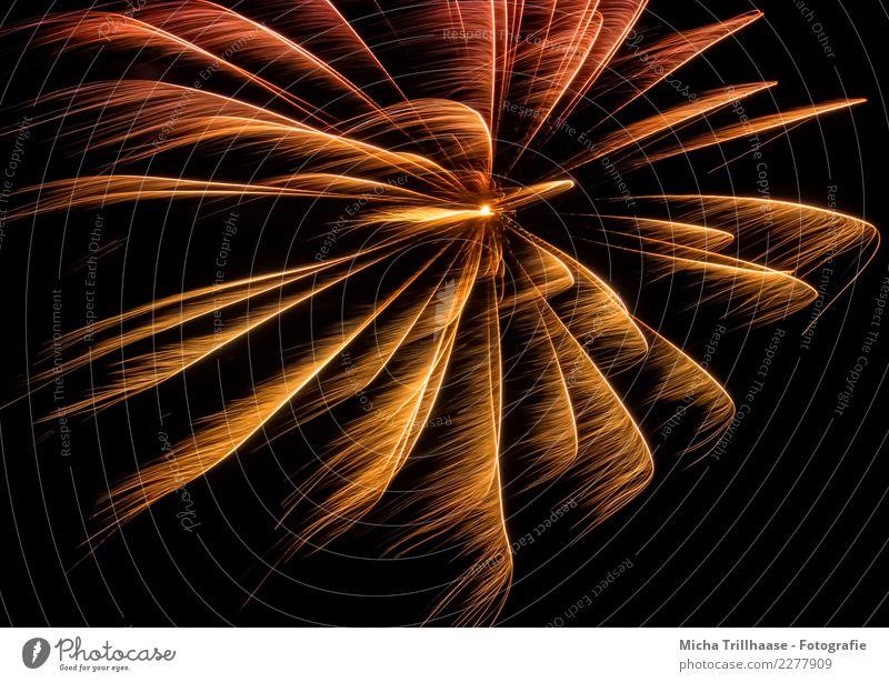 Feuerwerk am Nachthimmel Farbe rot Freude schwarz gelb Umwelt Feste & Feiern Party orange Stimmung Freizeit & Hobby hell leuchten glänzend Geburtstag