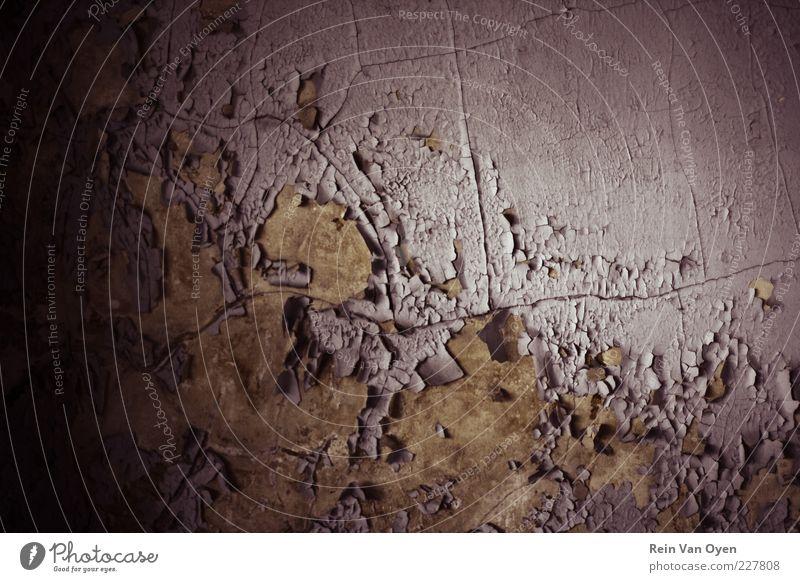 Horror-Textur Menschenleer Ruine Mauer Wand Stein Beton alt gruselig trocken Angst Entsetzen Todesangst Aggression Armut skurril urbex Konsistenz kaputt