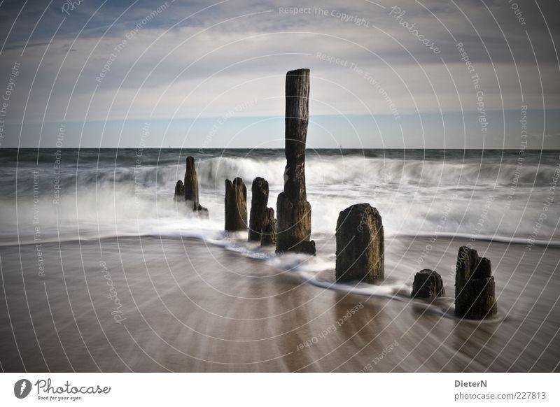 Wellen Natur Wasser blau Ferien & Urlaub & Reisen Sommer Strand Meer Wolken schwarz Umwelt Freiheit Landschaft Sand Luft Küste