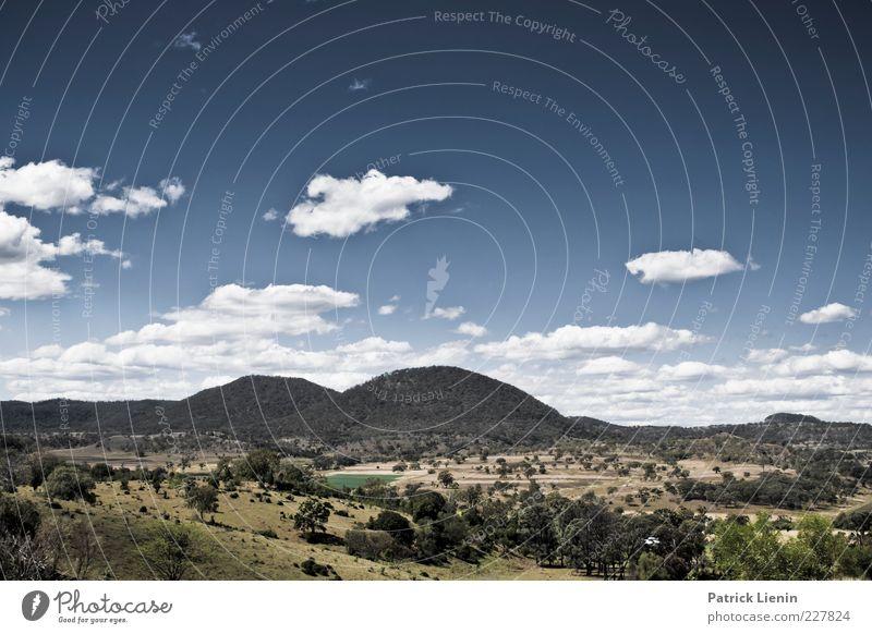 other side of the world Umwelt Natur Landschaft Urelemente Luft Himmel Wolken Sommer Klima Wetter Schönes Wetter Pflanze Baum Sträucher Wald Hügel Felsen