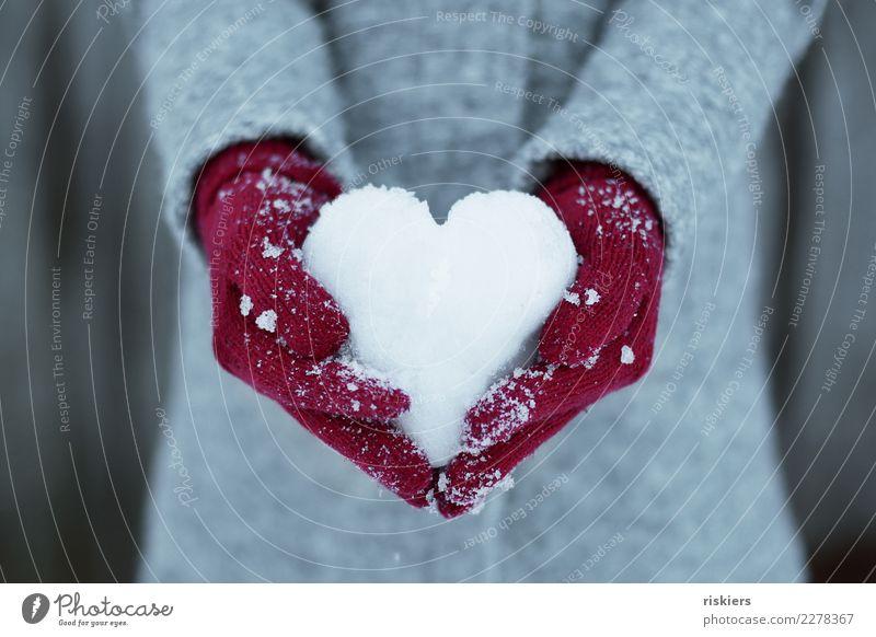 Winterliebe Mensch Hand 1 Umwelt Natur Schnee Handschuhe festhalten grau rot weiß Glück Lebensfreude Liebe Schneeherz Herz Mantel Farbfoto Außenaufnahme