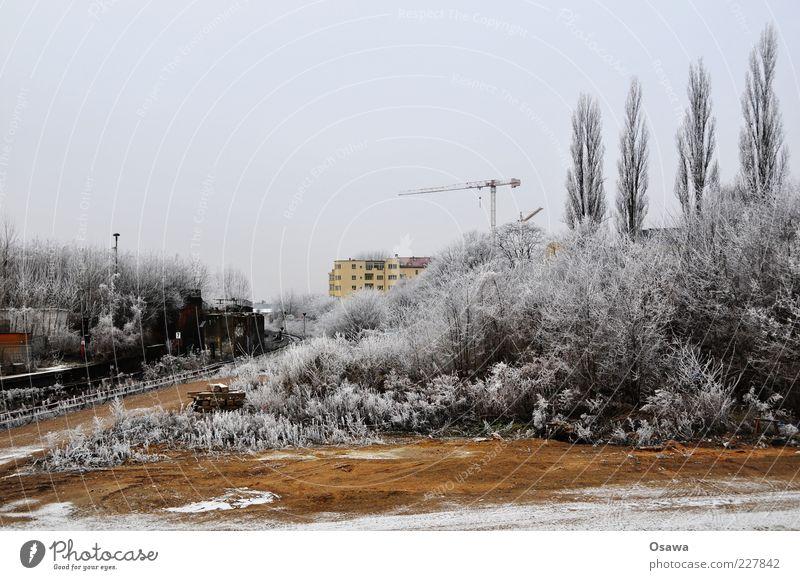 Eisnebel Baum Sträucher Raureif weiß grau Kran Gebäude Haus Brachland Ostkreuz kalt Winter Schnee Himmel Menschenleer