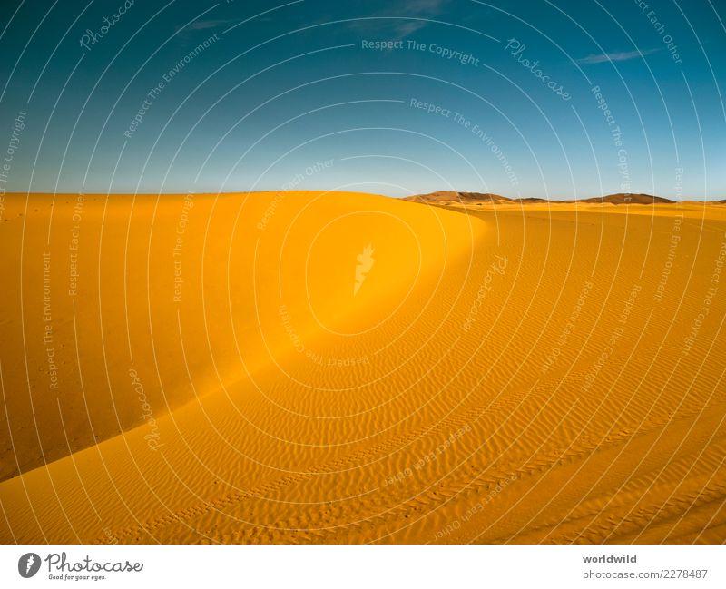 Erg Chebbi Wüste Natur Landschaft Sand Wolkenloser Himmel Sonne Sonnenaufgang Sonnenuntergang Sommer Schönes Wetter Ferien & Urlaub & Reisen wandern exotisch