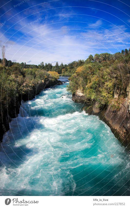 wild, kristall-klar und brausend Himmel Natur Wasser blau Sommer Wald Leben Umwelt Felsen nass Fluss Schönes Wetter türkis sprudelnd Strömung