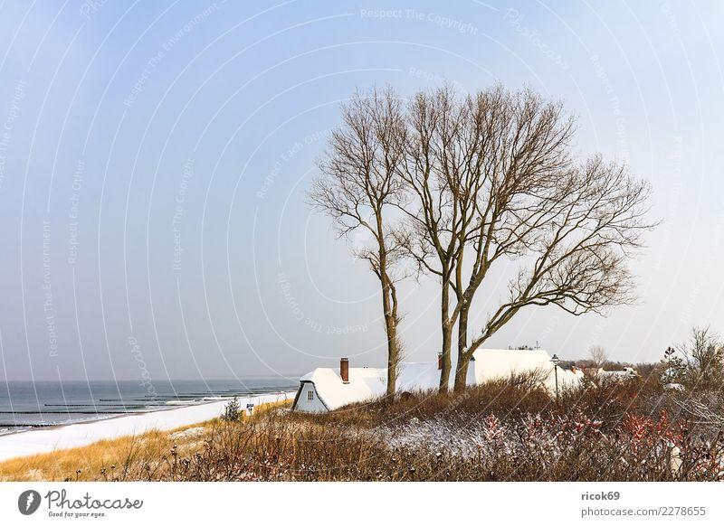 Ostseeküste in Ahrenshoop im Winter Erholung Ferien & Urlaub & Reisen Tourismus Meer Haus Natur Landschaft Wasser Wolken Klima Wetter Baum Küste Gebäude