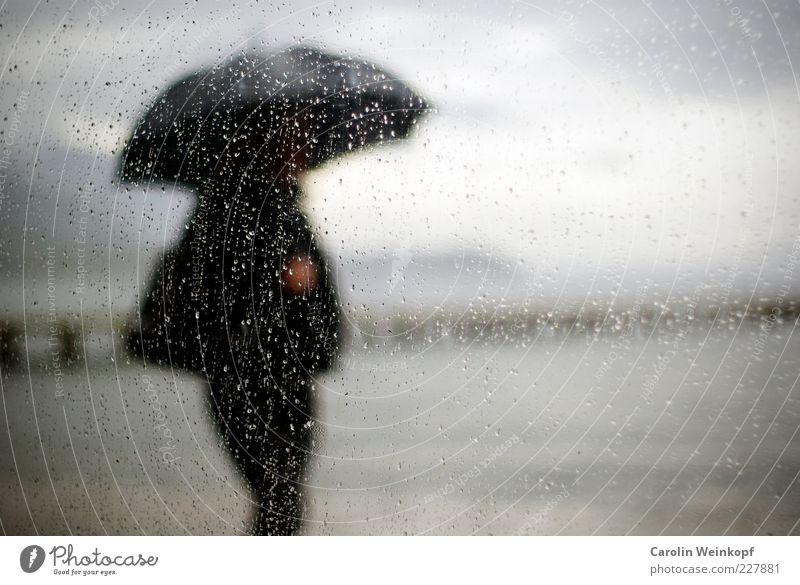 Umbrella. Luft Wasser schlechtes Wetter Nebel Regen Küste Seeufer Flussufer Gelassenheit Regenschirm Spaziergang Steg Fensterscheibe Farbfoto Gedeckte Farben