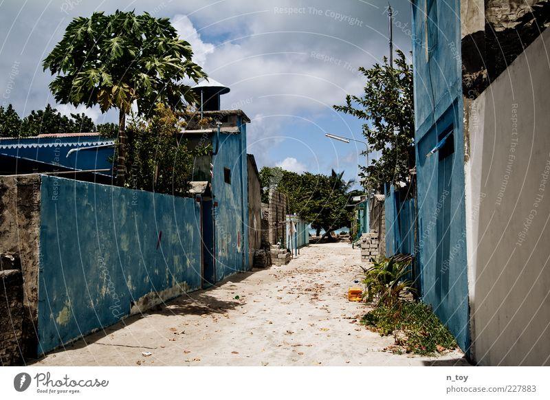Verlassen blau Sommer ruhig Einsamkeit Ferne Straße Wand Freiheit Umwelt Mauer Wege & Pfade Fassade Armut außergewöhnlich einfach Dorf