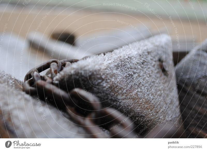 Frozen wood in chains Winter Eis umschließen Holz Rost gefangen eingeengt kalt Eiskristall Eisblumen Farbfoto Außenaufnahme Makroaufnahme Kettenglied