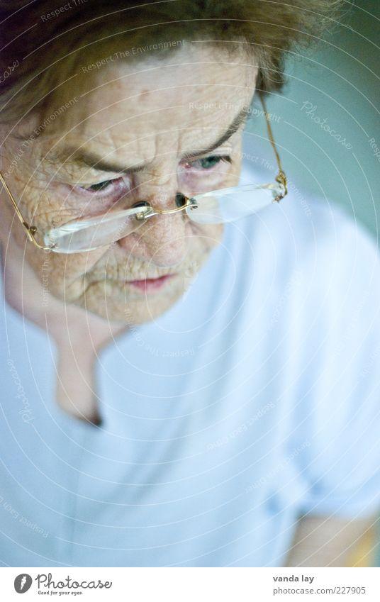 Oma Frau Mensch alt Senior ruhig Leben Erwachsene Haare & Frisuren Zukunft Brille 60 und älter nachdenklich Gelassenheit Großmutter brünett Ruhestand