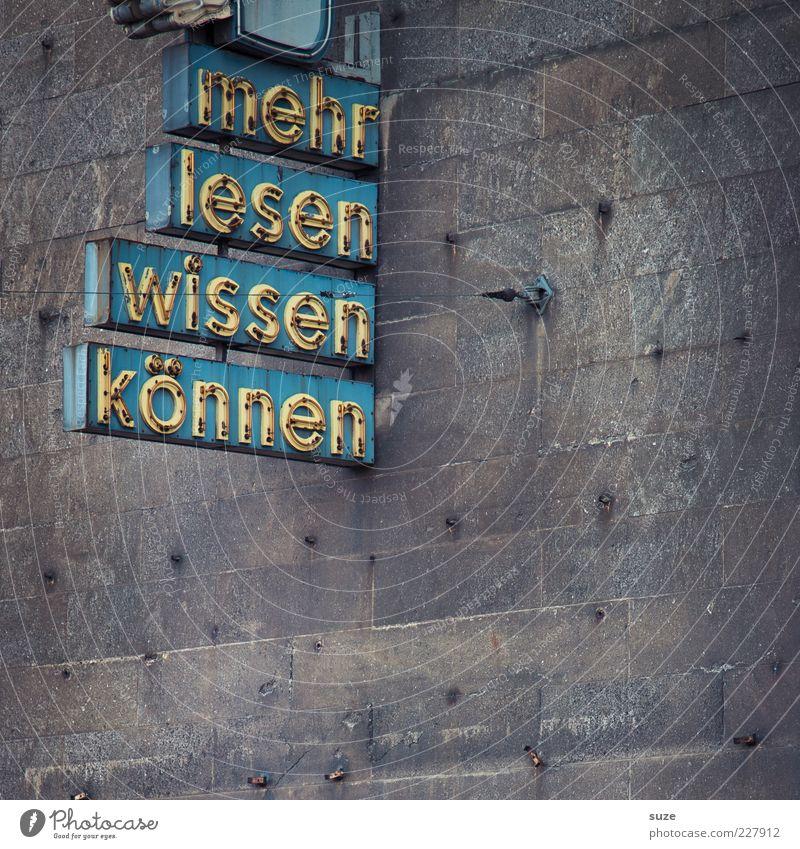 Hauptsache mehr Bildung lernen Bibliothek Mauer Wand Fassade Schriftzeichen retro Wissen Typographie Buchstaben Leuchtreklame lesen talentiert Wort Farbfoto