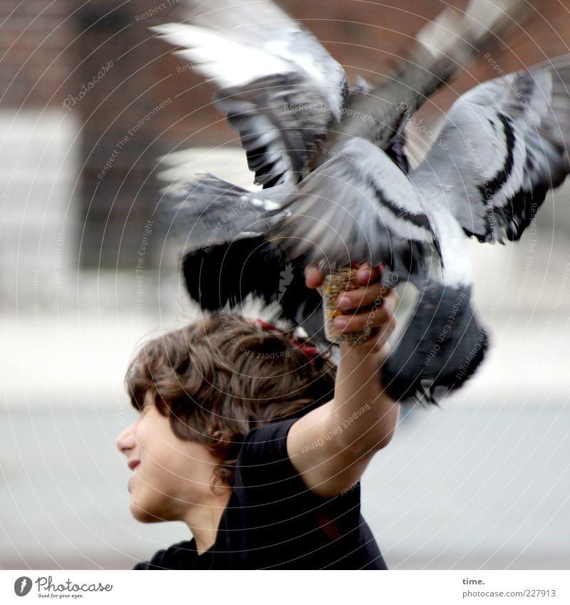 Taubenvereinssitzung Mensch Kind Jugendliche Freude Junge Kopf Kopf Bewegung Freundschaft Vogel Arme sitzen fliegen offen maskulin T-Shirt