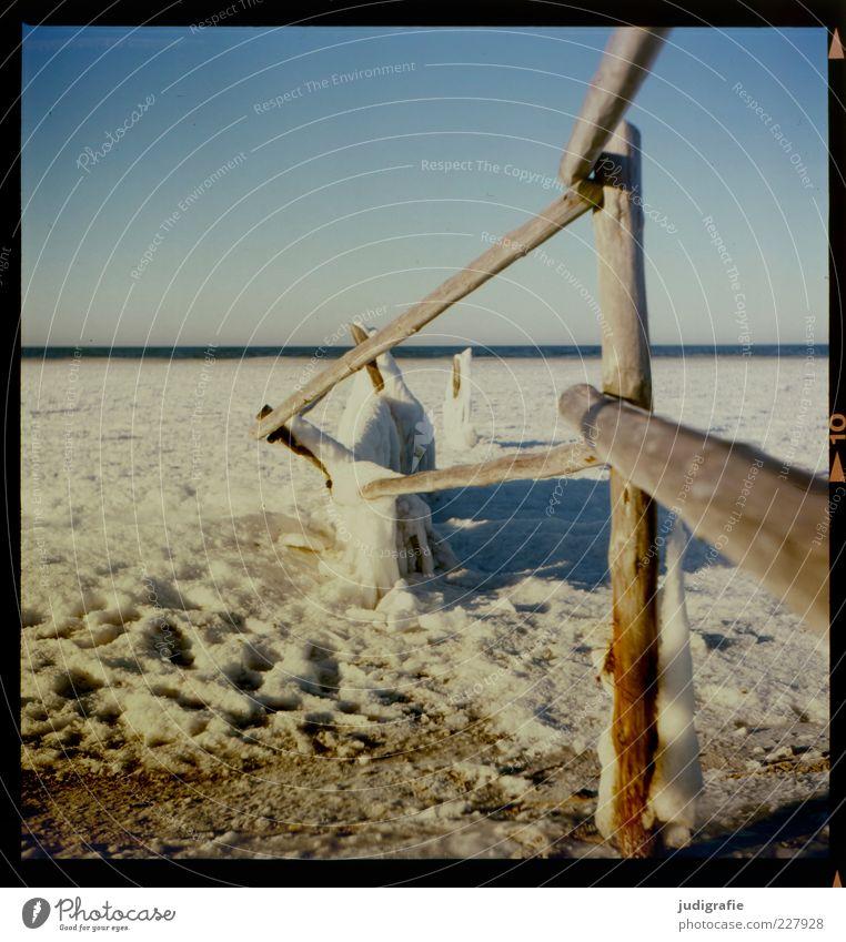 Darßer Ort Umwelt Natur Landschaft Himmel Wolkenloser Himmel Winter Klima Eis Frost Schnee Küste Strand Ostsee darßer ort kalt Stimmung Farbfoto Außenaufnahme
