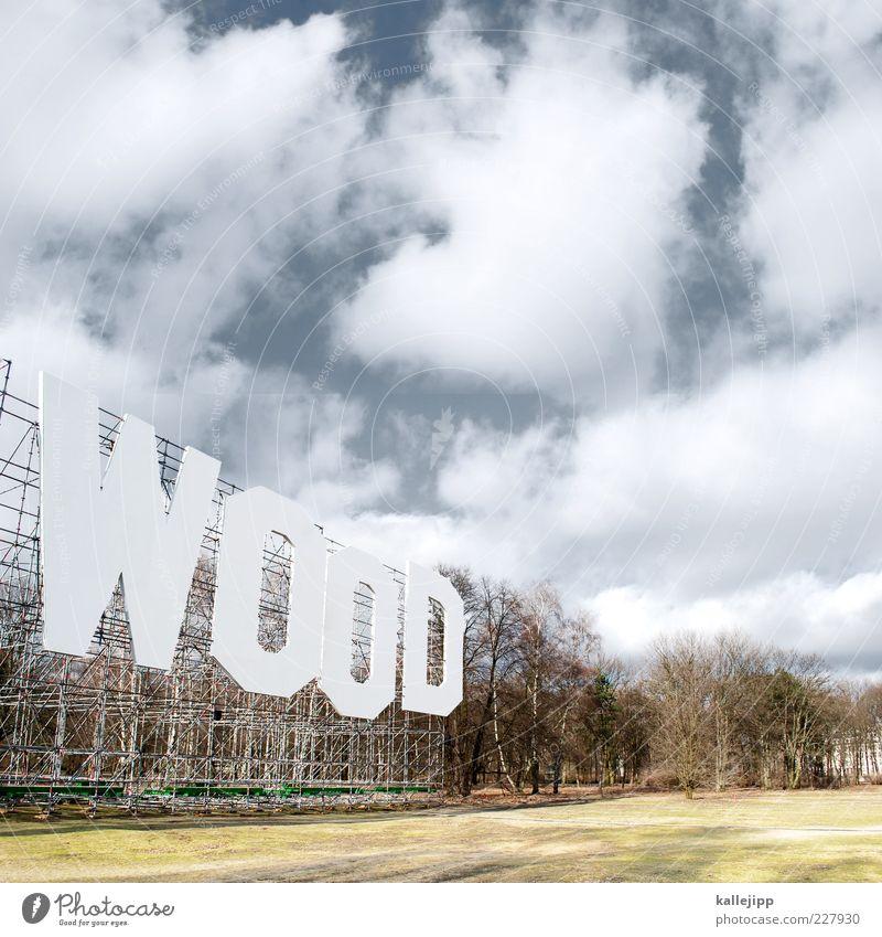 wood stock Himmel Natur Baum Pflanze Wolken Wald Wiese Berlin Umwelt Landschaft Park Schriftzeichen Typographie Schönes Wetter Wort Umweltverschmutzung