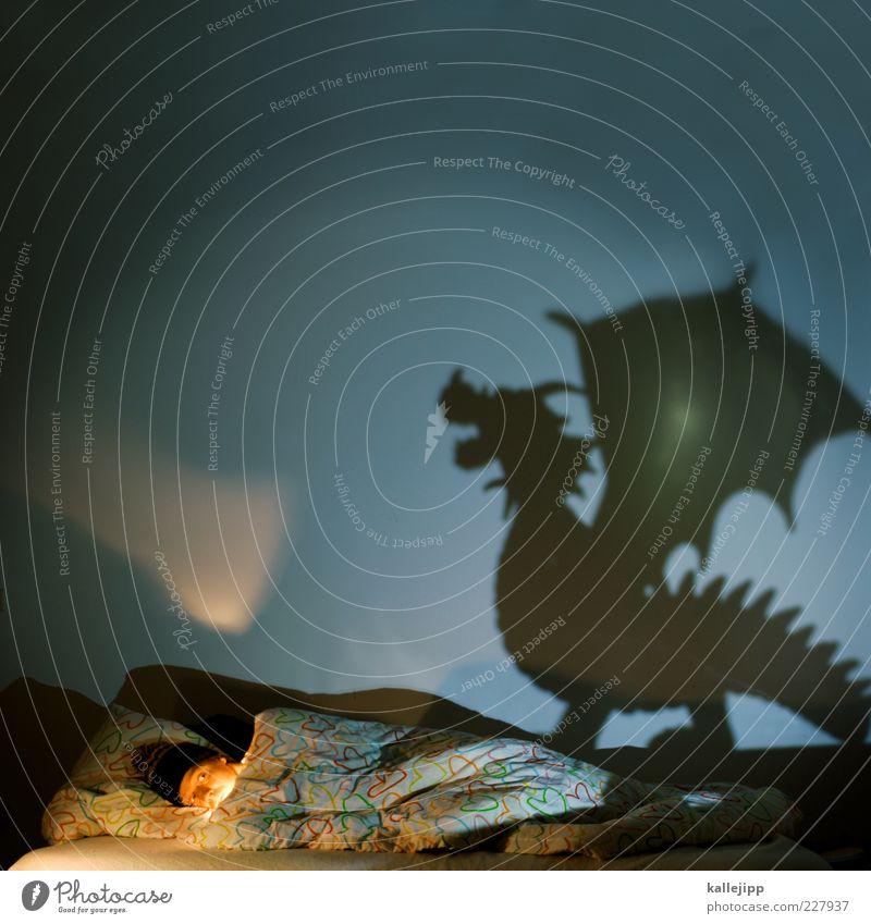 dragondream Bett Schlafzimmer Mensch maskulin Mann Erwachsene 1 Tier Wildtier Zeichen schlafen träumen dunkel Überraschung Angst Entsetzen Todesangst Drache