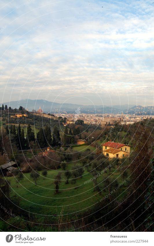 Florenz Natur Landschaft Himmel Hügel Italien Europa Stadt Stadtrand Menschenleer Haus blau grün Zypresse Farbfoto Außenaufnahme Textfreiraum oben Tag Totale