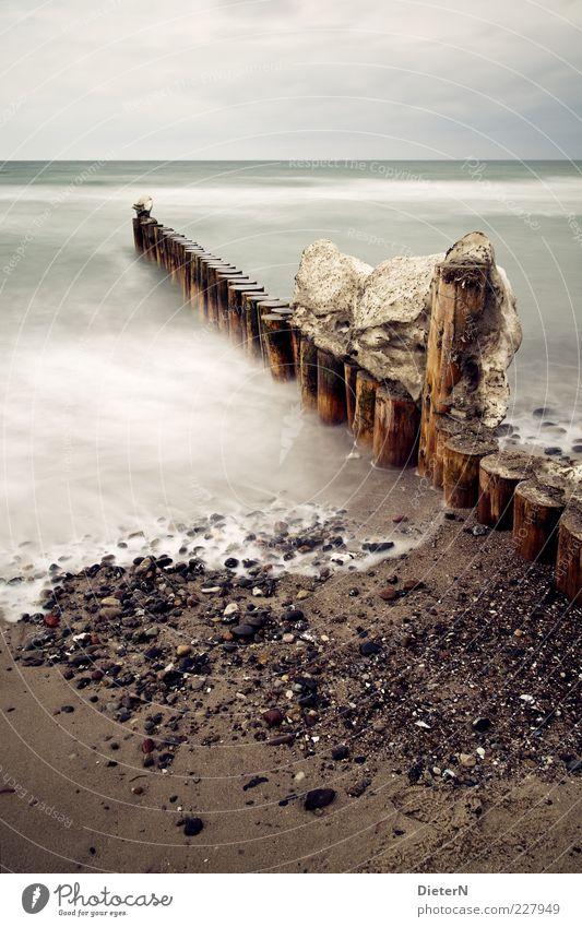 Winterende Umwelt Natur Landschaft Sand Wasser Himmel Wolken Sonnenlicht Klima Wetter Wind Eis Frost Schnee Küste Strand Ostsee Meer Wustrow