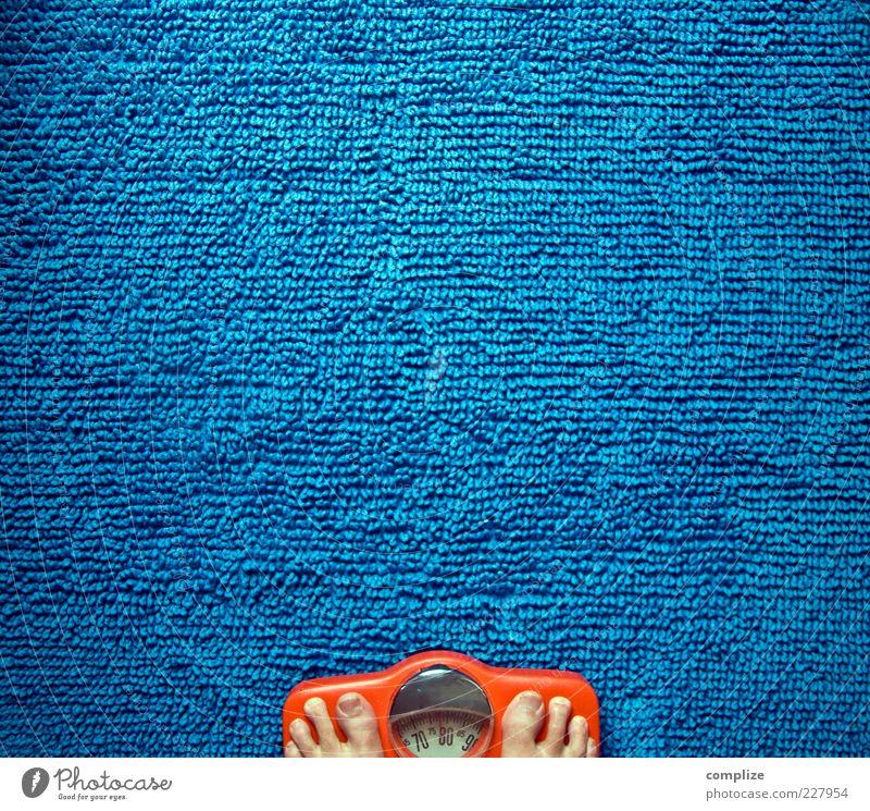 Blaubeer-Diät Gesundheit Übergewicht Wellness Zufriedenheit Waage maskulin Fuß blau einzigartig schön Personenwaage Barfuß Teppich Sorge messen Selbstwertgefühl