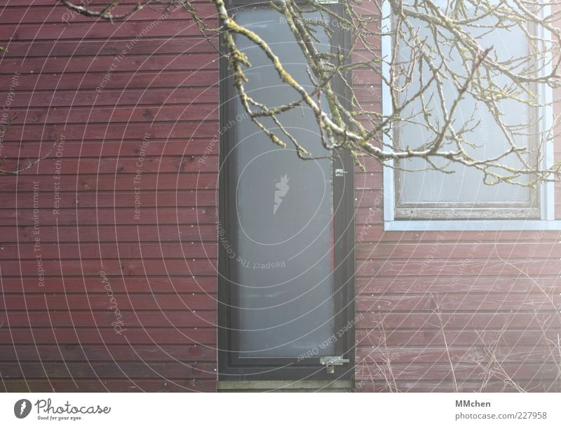 Guten Morgen, Sonnenschein! rot Haus Fenster Tür Wohnung Fassade Autofenster Häusliches Leben leuchten Hütte Schönes Wetter Dunst Zweige u. Äste beschlagen